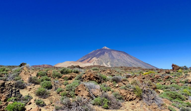 Tenerife with Kids Part 1 – Loro Parque and Teide National Park