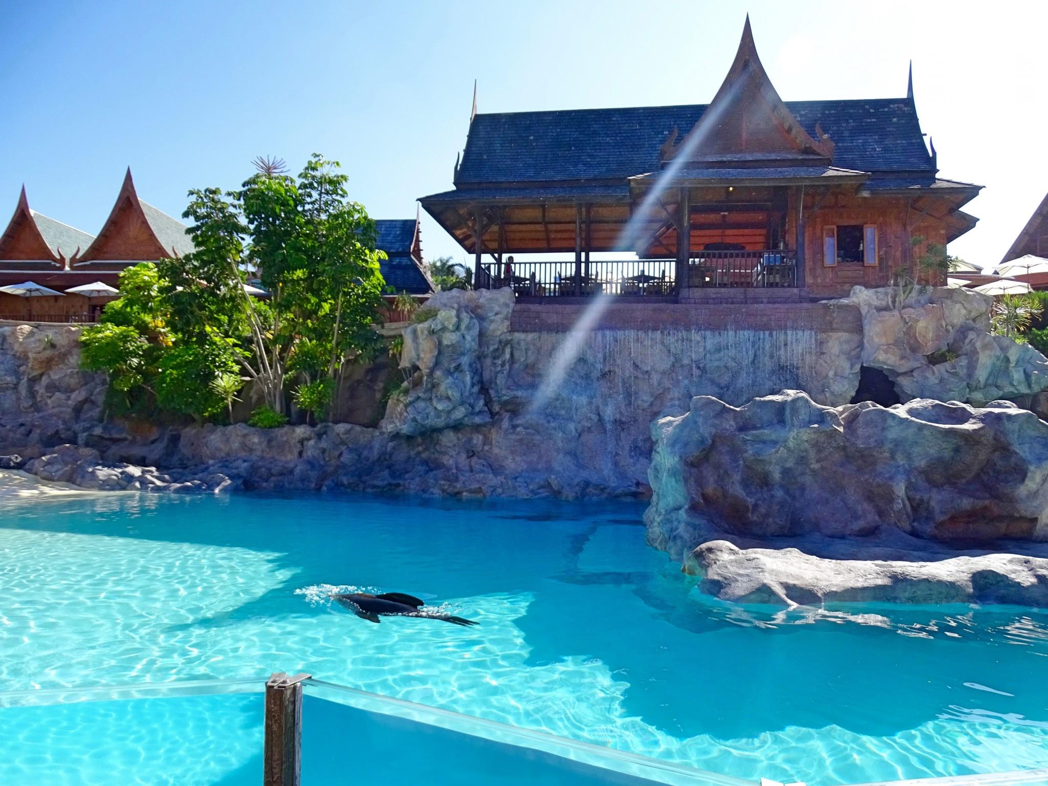 Siam Park Sea Lion Island